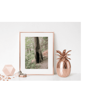 Perfect setup for prints. Framed and styled with copper accessories